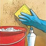 Should I Use Bleach to Clean up North Alabama Household Mold?