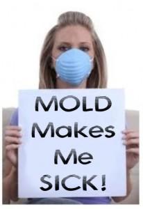 huntsville alabama mold removal, huntsville al molde remediation, huntsville alabama mold testing
